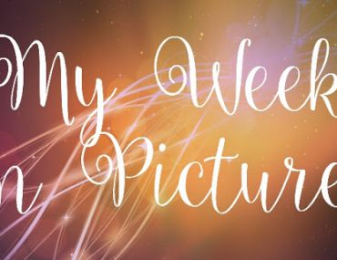 my2Bweek2Bin2Bpictures.jpg