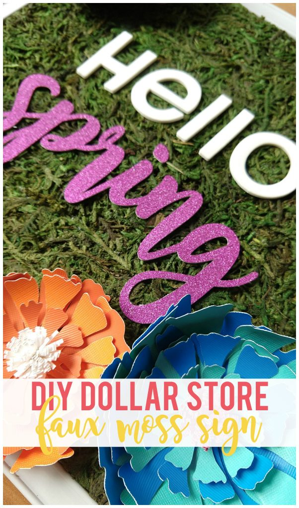 Make this cute and inexpensive faux moss sign using supplies from the dollar store!
