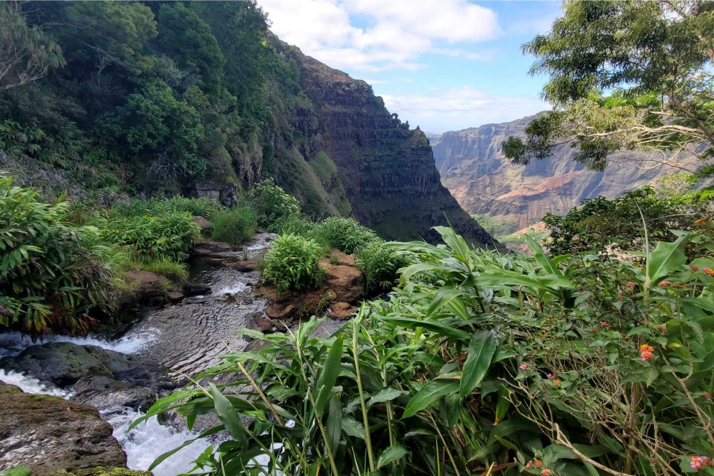 Hiking on Kauai is one of the most popular activities and for good reason!  There are so many beautiful hikes to choose from with varying lengths, difficulty and views. Find information on the Pools of Mokolea, Canyon Trail to Waipo'o Falls, Hanalei 'Okolehana Trail and Ho'opi'i Falls.